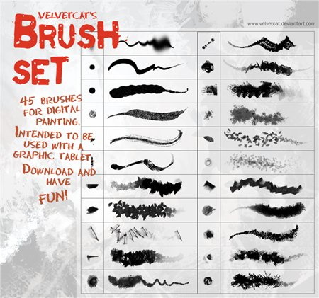 Velvetcat Brush Set