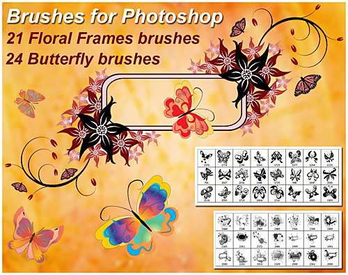 21 Floral Frame&24 Butterfly brushes for Photoshop
