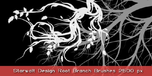 Starwalt Root Branches