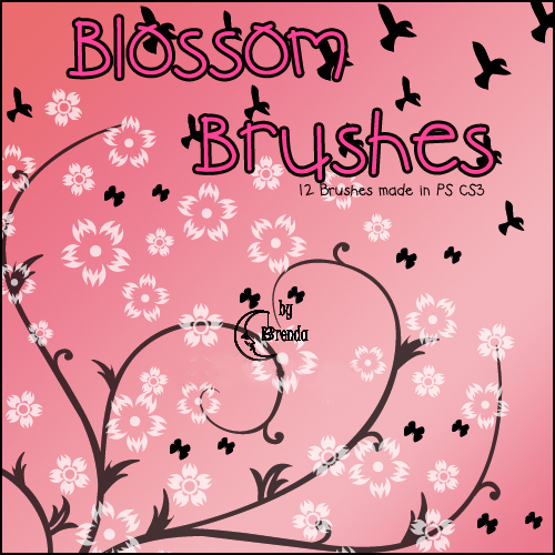 Кисти для Photoshop - Blossom Brushes by Brenda