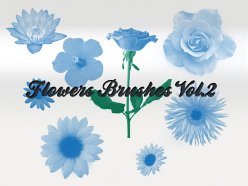 Flowers Brushes for Photoshop Vol 2