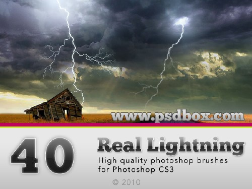 40 HQ Lightning Bolt brushes