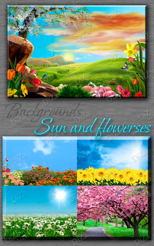 Backgrounds Sun and flowerses