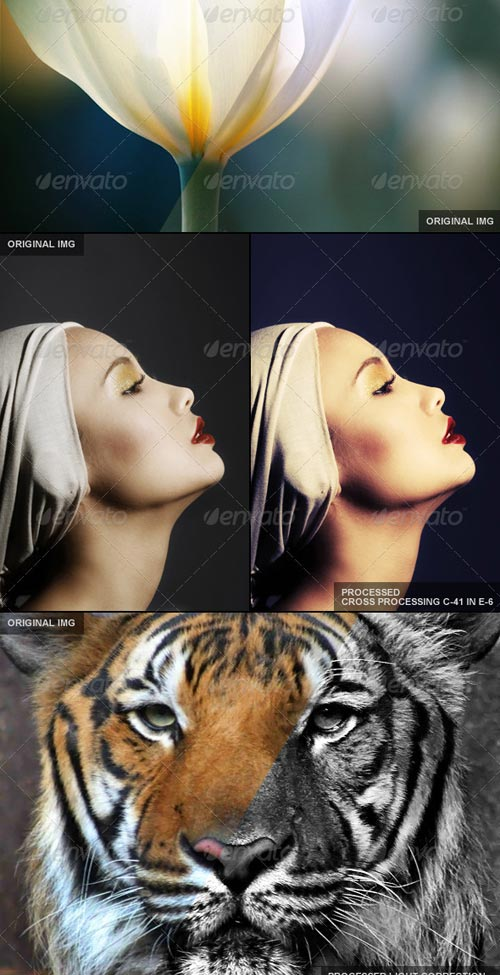 GraphicRiver 65 Premium Actions Set - REUPLOAD