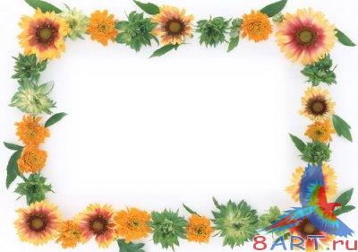 Flowers Frame for Photoshop