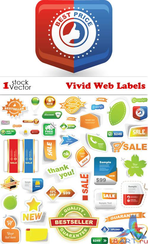 Vivid Web Labels Vector