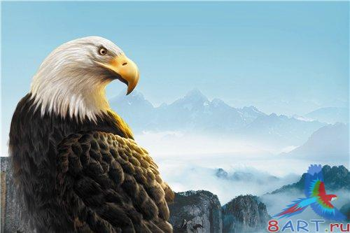 PSD - Eagle in the Mountains