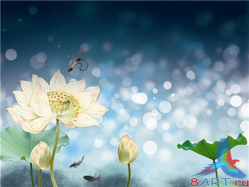 PSD - White flowers on blue background