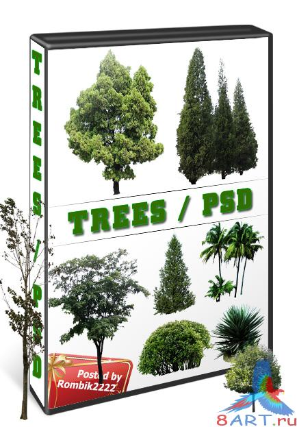 Green trees / Psd