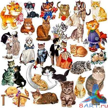 Clipart - so different cat