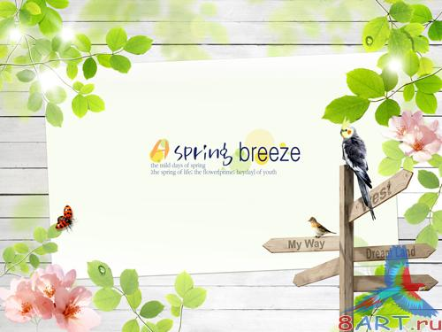 Sources - Spring foliage