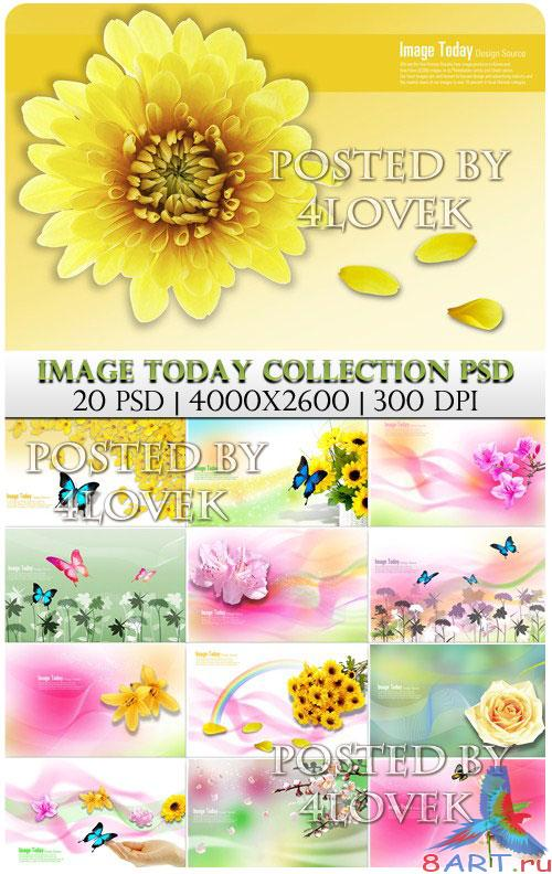 Image Today Collection PSD