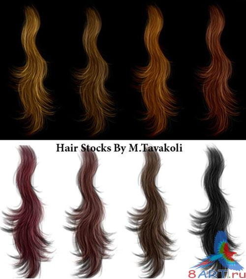 Hair Stocks PSD Template
