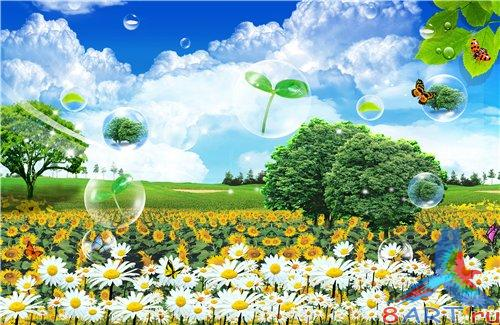 PSD - Field of daisies and yellow flowers