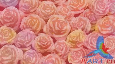 PSD Layered Pictures - Roses
