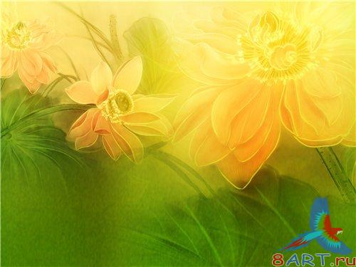 PSD - Green Yellow Floral Background