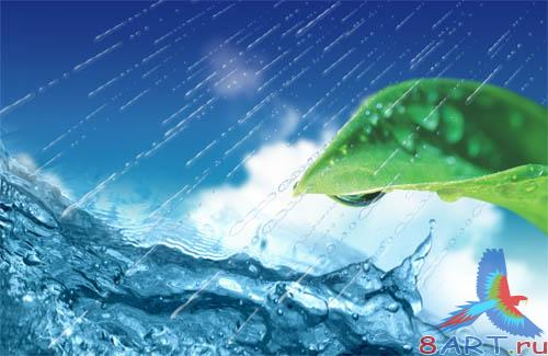 PSD - Leaf in water
