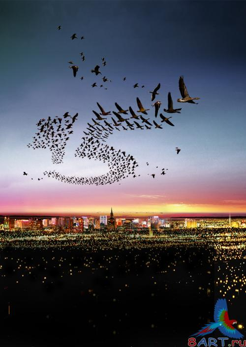 Birds over a night city psd