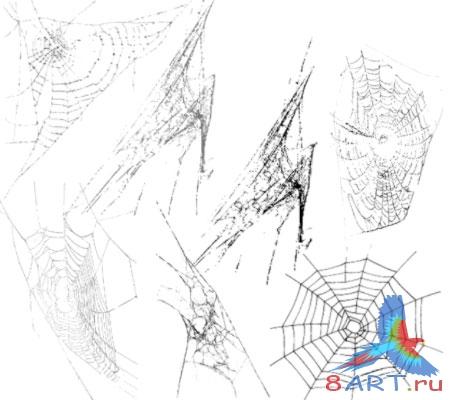 кисти для фотошопа паутина: